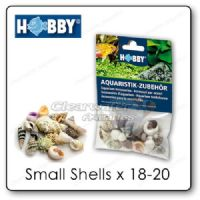 Hobby Small Snail Shells (Pack of 20)